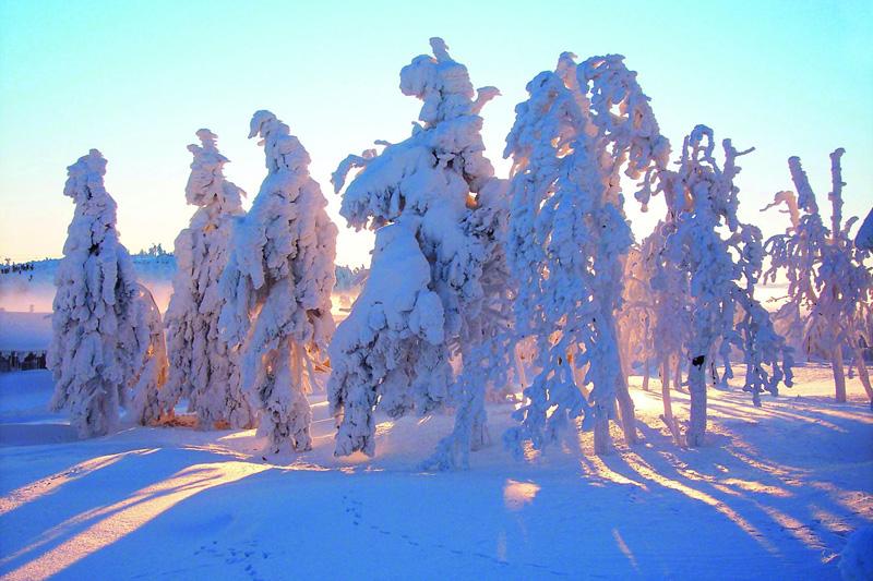 Schneespaß - Wintersport im Erzgebirge